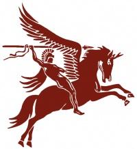 Pegasus Investigations Ltd