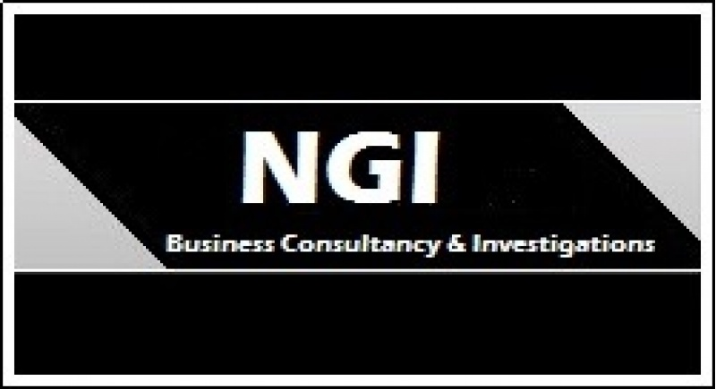 NGI - Business Consultancy and Investigations