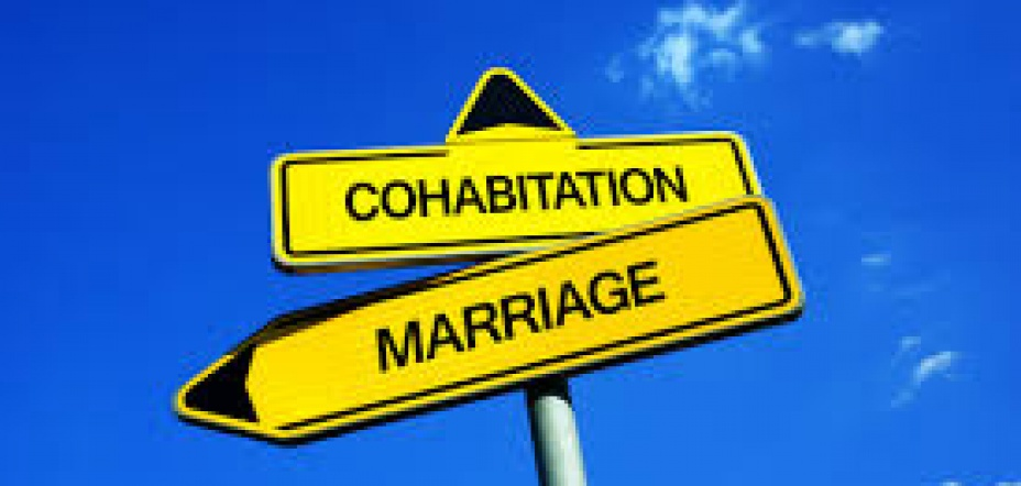 ABI Case Study Investigation into cohabitation.
