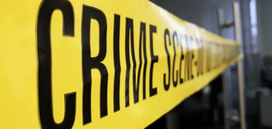 Organised Criminal Groups