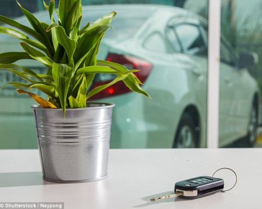Almost all drivers risk having cars stolen by criminals using high-tech theft devices